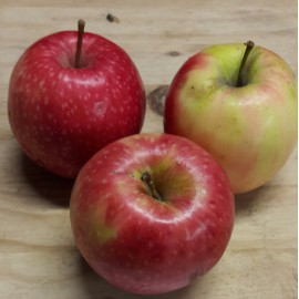Pomme cripps pink