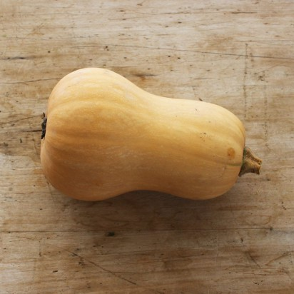 Courge butternut (courge musquée)